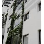 Shilpa Architects Exterior - Green Facade
