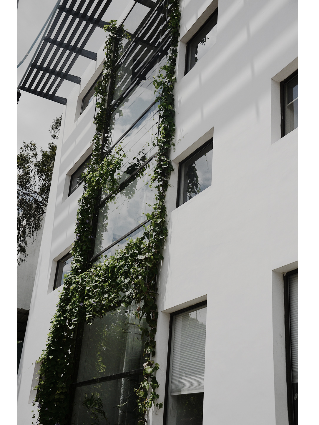 Shilpa Architects Exterior - Green Facade