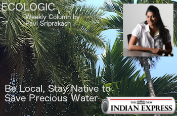 ECOLOGIC: Be Local, Stay Native to Save Precious Water