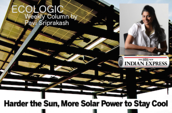 ECOLOGIC: Solar power to stay cool