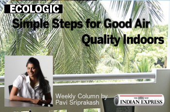ECOLOGIC: Simple steps for good air quality indoors