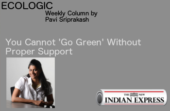 ECOLOGIC: You Cannot 'Go Green' Without Support