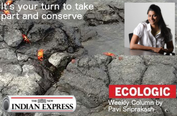 ECOLOGIC: It's your turn