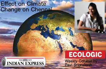 ECOLOGIC: Effect of climate change on Chennai!