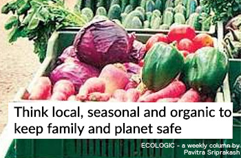 ECOLOGIC: Think local, seasonal, organic
