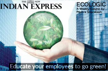 ECOLOGIC: Educate your employees to go green!