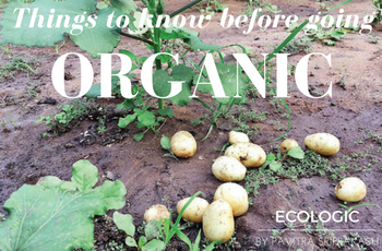 ECOLOGIC: Things to know before going organic