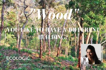 ECOLOGIC: 'Wood' you like to have a different building?