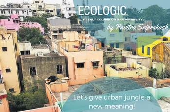 ECOLOGIC: Let's give urban jungle a new meaning!