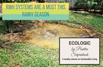 ECOLOGIC: RWH systems are a must this rainy season