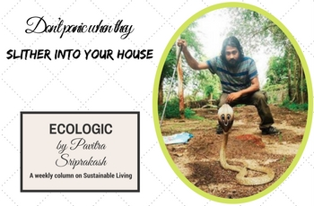 ECOLOGIC: Don't panic when they slither into your house