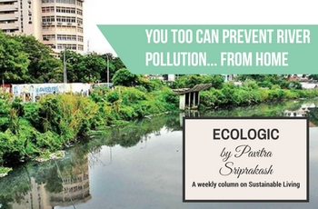 ECOLOGIC: You too can prevent river pollution