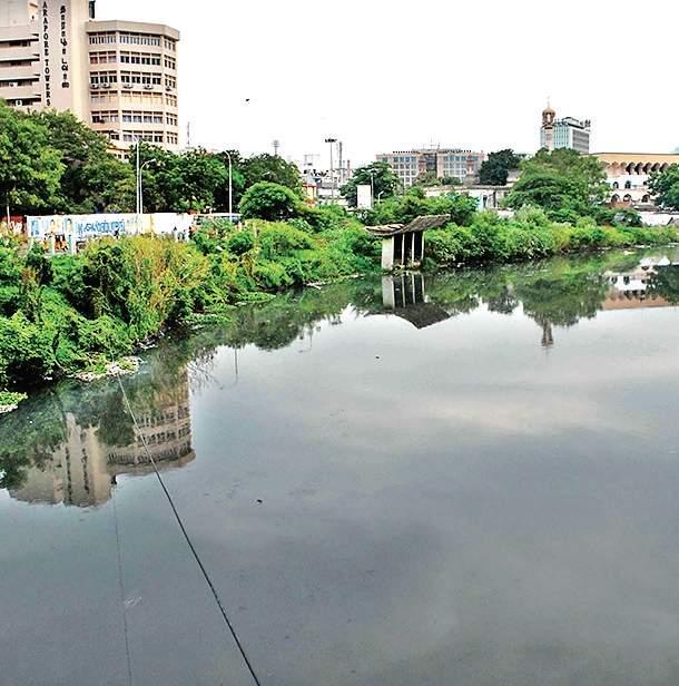 Cooum River, Chennai
