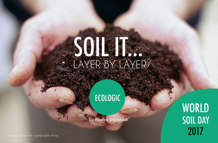 ECOLOGIC : Soil it…Layer by layer