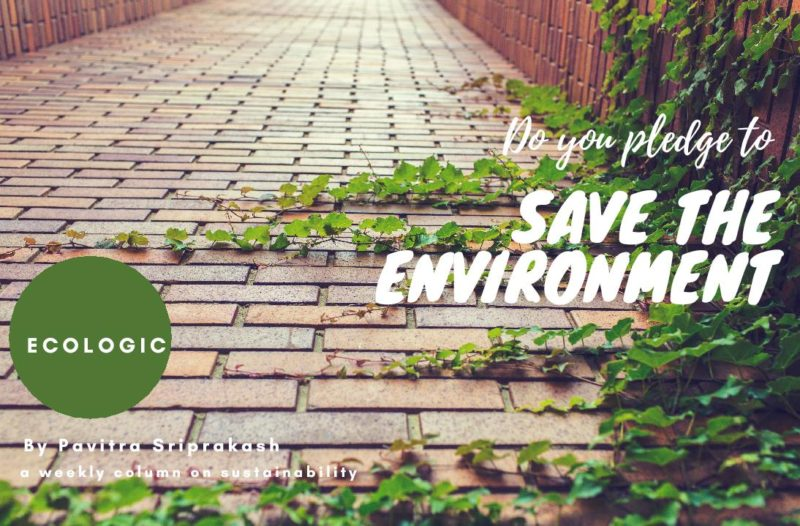 ECOLOGIC : Do you pledge to save the environment?