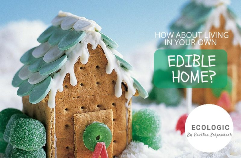 ECOLOGIC: How about living in your own 'edible' home?