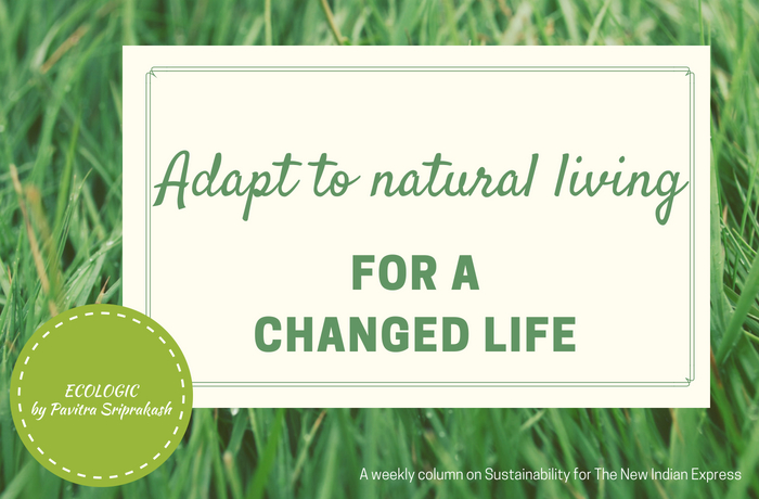 ECOLOGIC: Adapt to natural living
