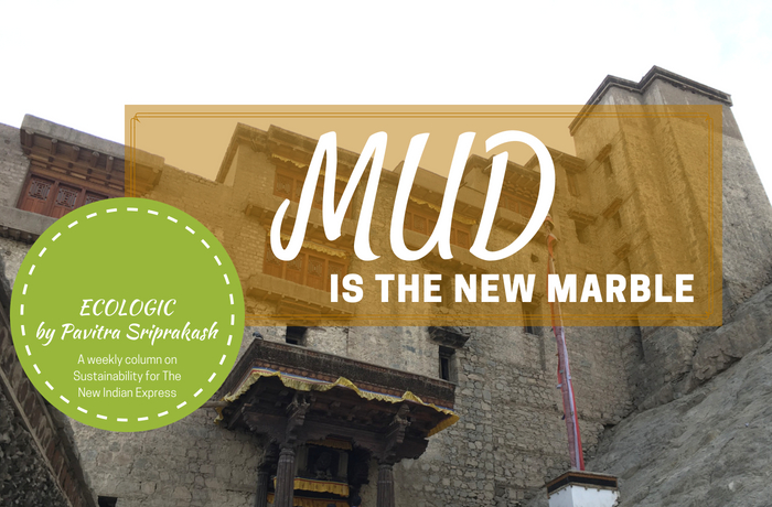 ECOLOGIC: Mud is the new Marble
