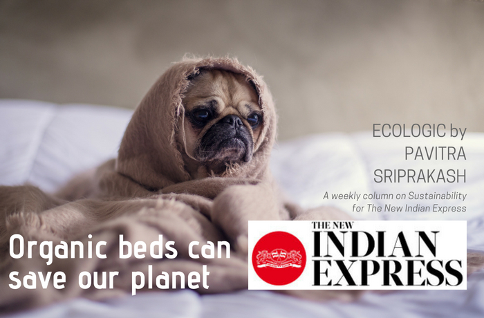 ECOLOGIC: Organic beds can Save our Planet