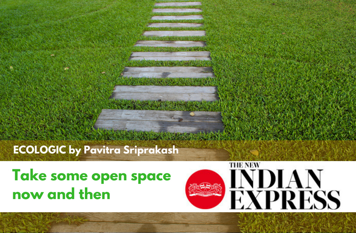 ECOLOGIC: Open Spaces