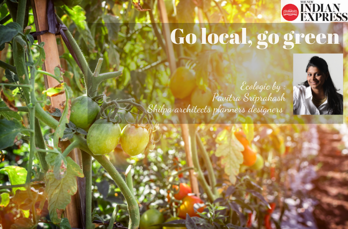 ECOLOGIC : Go local, go green